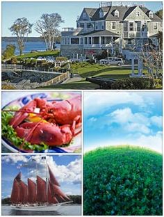 Use Your Blues: Bountiful Season = Classic Recipes  Use Your Blues: Bountiful Season = Classic Recipes   Also: Know Wild Blues? Win a *Deluxe 5-Day Bar Harbor Trip*!