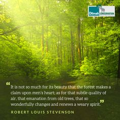 """This quote from the Book """"Essays of Travel"""" by Robert Louis Stevenson reminds us of the indistinct feeling that leaves us so enchanted when stepping into a forest. . . . . . #MotivationMonday #Conservation #Dilmah #NoCompromise #DilmahConservation #DiversityofLife #LoversofLife #motivationalquotes #Mondaymotivation #inspire #interconnected #wellness #planetwellness #quotes #inspirationalquotes #nature #environmentalist Louis Stevenson, Shared Reading, Make Business, Old Trees, Robert Louis, The Heart Of Man, Environmentalist, Educational Programs, Human Services"""
