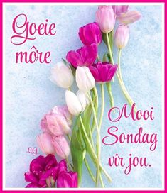 Lekker Dag, Good Night Blessings, Goeie More, Afrikaans Quotes, Happy Sunday, Beautiful Pictures, Van, Sayings, Deep Thoughts