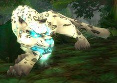 nice WoW Exotic Hunter Pets, NO Spirit Beasts, NO Rares