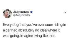 Feeling lazy? Hate responsibility? We've got the perfect way to pass the time: scrolling through these delightfully dumb and entertaining memes. #funny #memes #lol #tweets #dogs