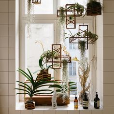 Equal parts sculpture and functional object, the Plant-in City Air Terrarium for Freunde von Freunden is an evolution in Huy Bui's inspiring Plant-in City project, developed in response to an increasing need for greenery in confined urban spaces. Check it out in the #fvfshop - link in our profile! #fvfapartment #berlin #fvonf