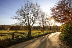 Country Lane Shadows... by TRM-photography.co.uk, via Flickr