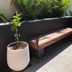 One of my personal favourites for We used a monochrome colour palette for this project in Freshwater White pots v dark walls White interior pool tiles v bluestone coping Oh and the Citrus still needs a bit of growing Plants by exoticnurseries Pots by thebalconygarden