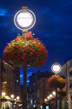 Street Lamp Blossom, Rijeka, Croatia