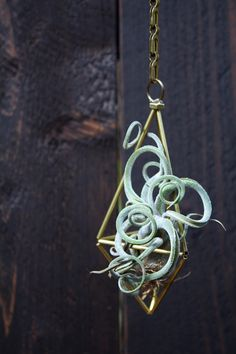 Hey, I found this really awesome Etsy listing at https://www.etsy.com/listing/166018721/small-himmeli-air-plant-hanger