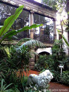 museo casa de la bola, Mexico City, Mexico