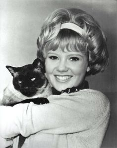 Hayley Mills publicity for 'That Darn Cat',  1965.