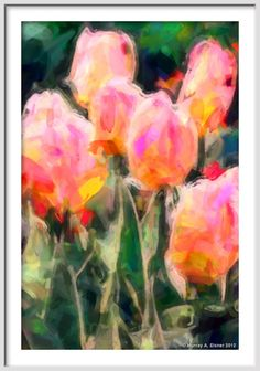 Orange & Pink Tulip Flowers -  ABSTRACT EXPRESSIONISM FLORAL Painting Giclee on watercolor paper by Murray Eisner