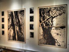 """Malerei mit Chinatusche """" Wald 4 und 5"""" mit jeweils 4 sw-Photos"""