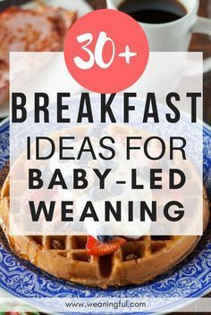 Baby led weaning breakfast ideas - blw healthy breakfast recipes for introducing. Baby led weaning breakfast ideas - blw healthy breakfast recipes for introducing solids - great finger foods and first foods for 6 months, 9 months, Baby Led Weaning Breakfast, Baby Led Weaning First Foods, Weaning Foods, Baby Breakfast, Blw Breakfast Ideas, One Year Old Breakfast Ideas, Healthy Baby Food, Healthy Breakfast Recipes, Eat Healthy