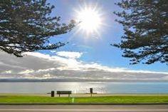 Image result for napier city Napier New Zealand, Golf Courses, City, Image, Cities