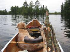 Canoe + dog / via gear junkie