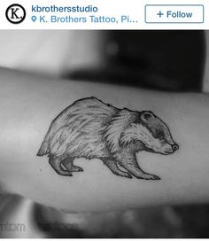 Stipple badger tattoo