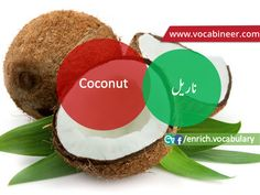 Learn English vocabulary in Urdu. English through Urdu made easy. Easiest way to learn English vocabulary in Urdu. English to Urdu Vocabulary. Gre Vocabulary, English Vocabulary, English Speaking Practice, English Language Learning, Fruits Name With Picture, Fruits And Vegetables Names, Fruit Names, English Sentences, Esl