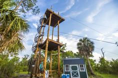 Zip line over a natural preserve at Empower Adventures Tampa Bay, located in Oldsmar, FL! Florida Living, Tampa Bay, Preserve, Fair Grounds, America, Zip, Adventure, Natural, Beach