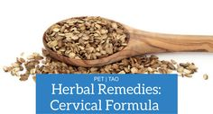 Cervical Formula: How to Holistically Relieve Your Dog's Neck Pain
