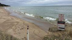Study indicates invasive fish could live in Lake Michigan