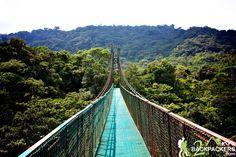Costa Rica Travel - Hanging Bridges at Selvatura Park in Monteverde Cloud Forest