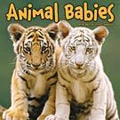 Animal Babies 2015 Mini Wall Calendar: 9781438831916 | Baby Animals | Calendars.com
