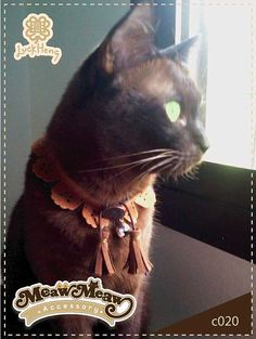 Cat Collar Country by LuckhengShop on Etsy, $10.00