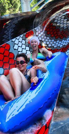 King Cobra, Amusement Park, Antalya, Attraction, Carnival, Water Parks, Fun Things, Summer, Turkey