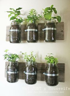 6. Wall Planters