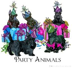 Scottish Terrier Party