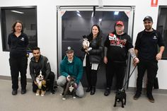 City of Casey, meet your next generation of #doggy 🦮🐩 leaders 🎓 - our latest batch of #puppy #school graduates have just completed their certification, and what a bunch of cuties they are ...    It's a very hearty Congraduations to Axl, Jet, Luci and Loca on passing their exams with flying colours, and we now look forward to their going on to bigger and brighter things as impeccably mannered members of the community.    Can you picture yourself and your pup here? It's Casey's finest most prof Puppy School, Dog Stories, Cute Puppies, Jet, Pin Up, Community, Colours, Group, Board