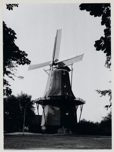 Windmill, Utility Pole, Statue Of Liberty, Holland, Travel, Statue Of Liberty Facts, The Nederlands, Viajes, Statue Of Libery