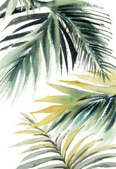 Buy Palm leaves Original watercolor painting, Watercolor by Sophie Rodionov on Artfinder. Discover thousands of other original paintings, prints, sculptures and photography from independent artists. Watercolor Leaves, Abstract Watercolor, Watercolor Illustration, Watercolor Paintings, Leaf Photography, Leaf Drawing, Plant Painting, Paintings For Sale, Original Paintings
