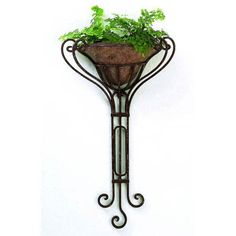 Edita Wrought Iron Wall Planter with Removable Liner – Metal Plant Hanger