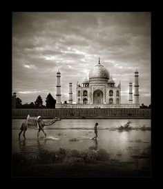 another taj mahal...this is a great example of how to shoot a popular site in a unique way! love the vignette...so well done