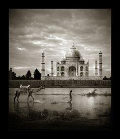 Taj Mahal by Thamer Al-Tassan, via Behance