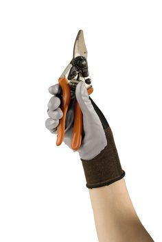 XL, any fun colors :)  Nitrile Gloves for Gardening   Buy from Gardener's Supply
