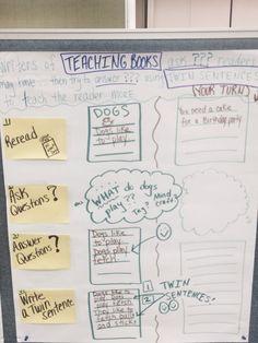 Elaboration strategies / twin sentences