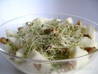 Ensalada de Brotes de Alfalfa y Zanahoria