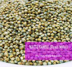 Pearl Millet / Bajra / Kattu or Nattu Kambu