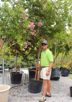 """Exit 181...marvelous """"green"""" experience at The Barn Nursery.  Stop in and say hello to Cole! Chattanooga, TN"""