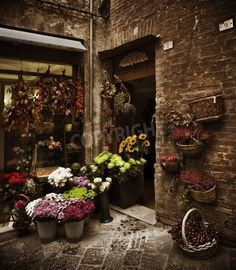 Tuscan Flower Shop Italy mural