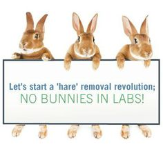 Re-pin if you agree! #BeCrueltyFree