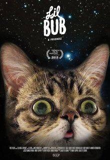 This Trailer for Lil Bub & Friendz Has and Needs No Explanation