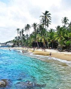 PARQUE TAYRONA y sus atractivas playas. TAYRONA PARK and its atractive beaches. This incredible place is one of the finest exponents of biodiversity worldwide . South America Travel, Great Shots, Cabo, Beaches, The Incredibles, Outdoor Decor, San Juan, Colombia, Sands