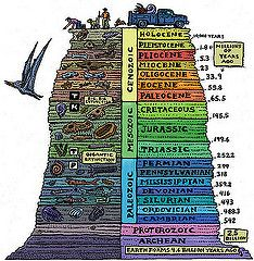 The geologic time scale helps scientists try and understand earth& past. Human beings, recently on the scene, are but a small piece of earth& history. Earth Science, Science And Nature, Illustration Book, Historia Universal, Teaching Science, Science Education, Mad Science, Archaeology, Fun Facts