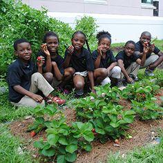 Farm to School Act of 2015