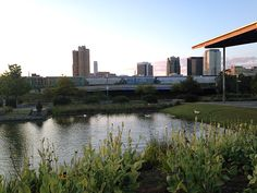 something lovely // an evening at Railroad Park in downtown Birmingham Alabama