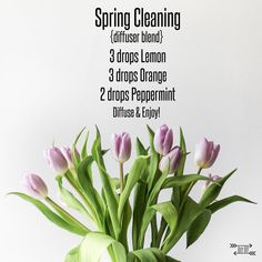 Spring Cleaning Diffuser Blend
