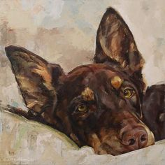 Buster, an Australian Kelpie - Kathleen Coy