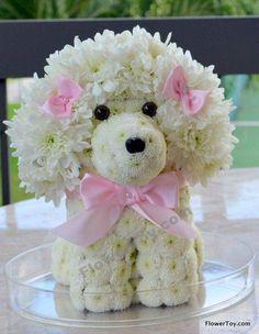Wonderful poodle of flowers Unique Flower Arrangements, Unique Flowers, Love Flowers, Beautiful Flowers, Deco Floral, Arte Floral, Floral Design, Flower Crafts, Flower Art