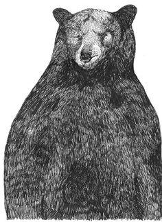 Lizzy Stewart: - bear
